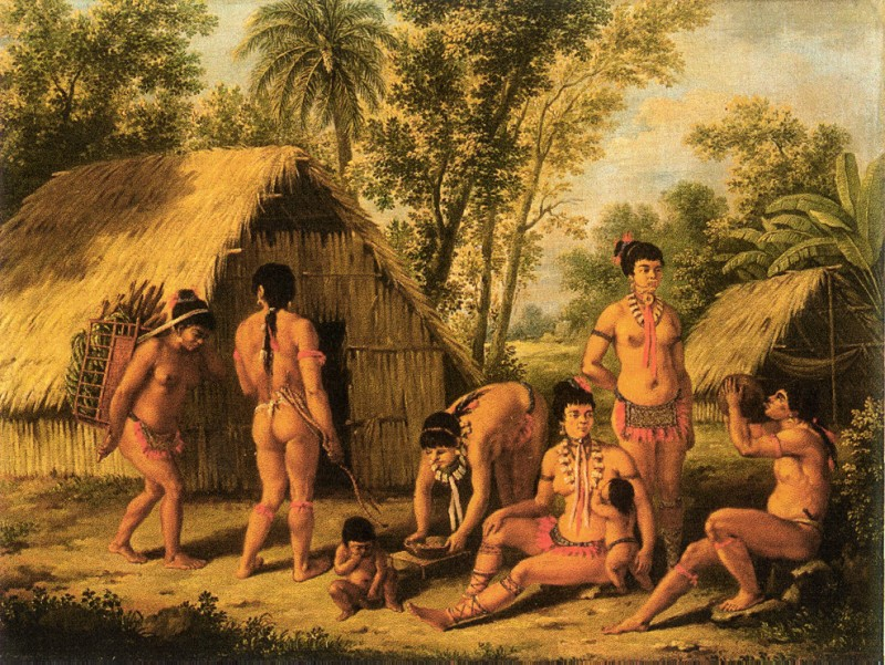 an analysis of columbus first encounters with the native peoples of the caribbean in a peoples histo Free native americans generally portrayed in history books our book states that columbus was highly the native peoples one of the first white men.
